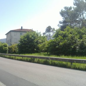 Grande villa padronale con terreno a Carraia