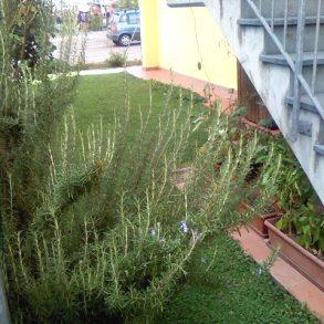 In quadrifamiliare con giardino ed ampia terrazza
