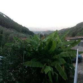 Ampia casa colonica con vista su Lucca