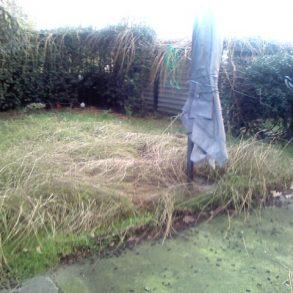 Piano terreno con ampio giardino privato