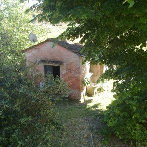 Fine corte con ampio giardino e capanna