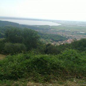 Due porzioni di rustici adiacenti con tanto terreno e vista mare