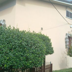 Villa singola con giardino e garage