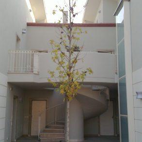 Appartamento con mansarda nuovo in Classe A+