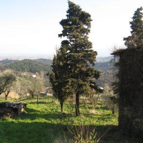 Capanna singola con ampio giardino da ristrutturare