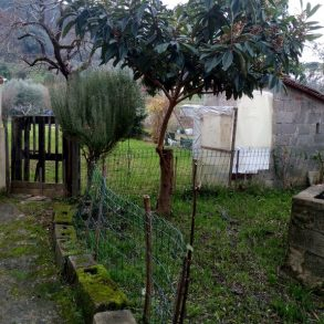 Casa di corte con ampio giardino e capanna