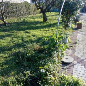 Terratetto con 2 appartamenti e giardino