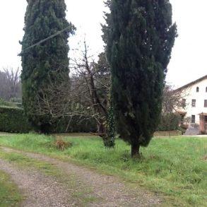 Grande casa padronale con ampio giardino