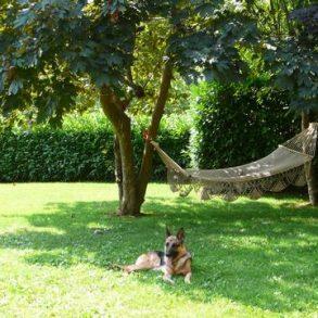 Caratteristico rustico con ampio giardino