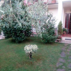 Villa bifamiliare con giardino e garage