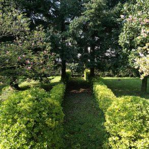 Villa singola anni '70 con giardino sui 4 lati