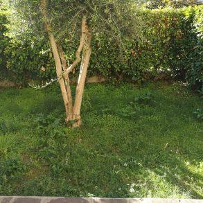 Terratetto con giardino privato e ingresso autonomo