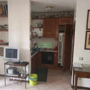 Appartamento con giardino a Borgo Giannotti