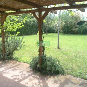 Ampio rustico con giardino e pergolato